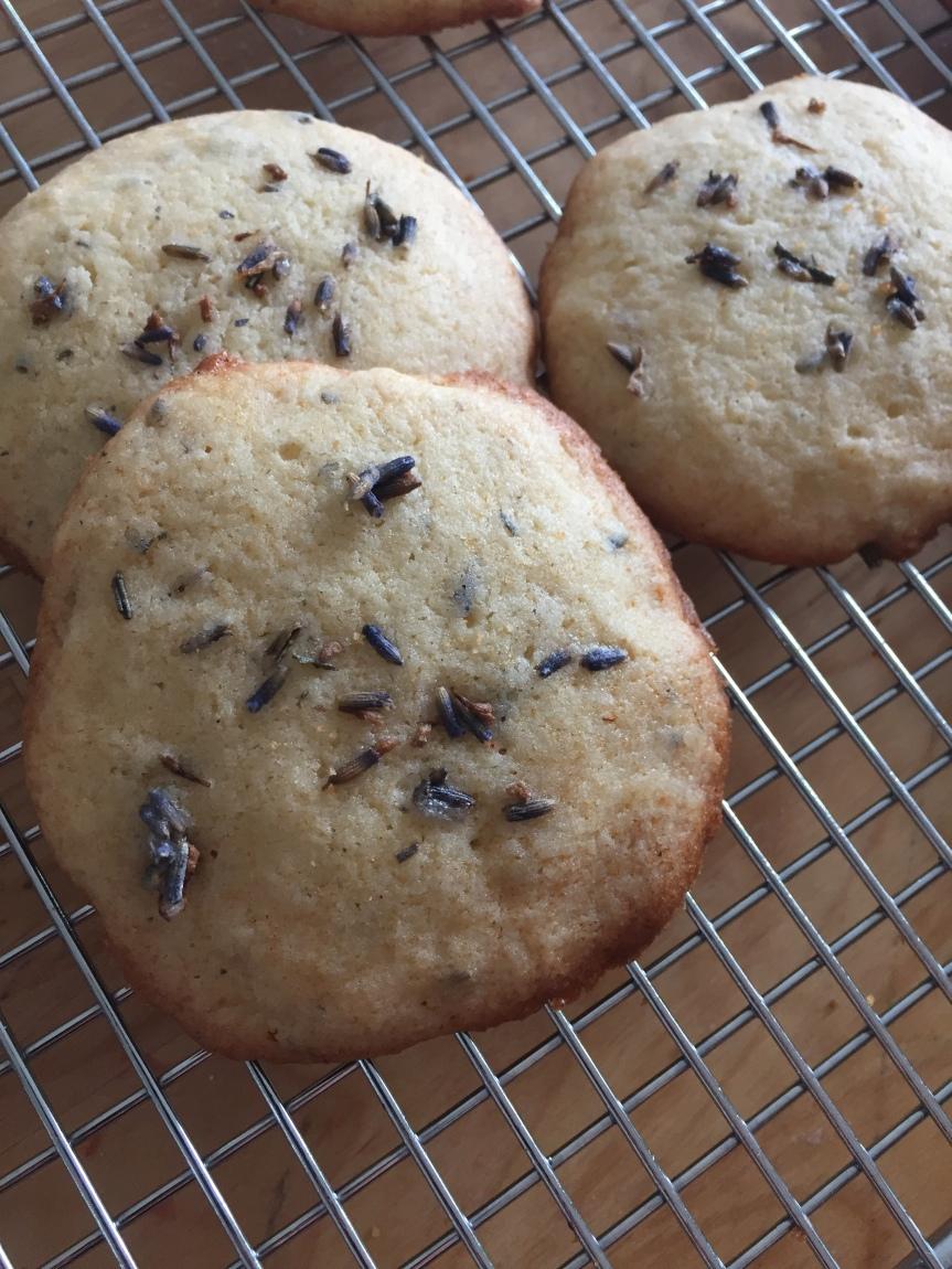 Lavender Honey Cookies